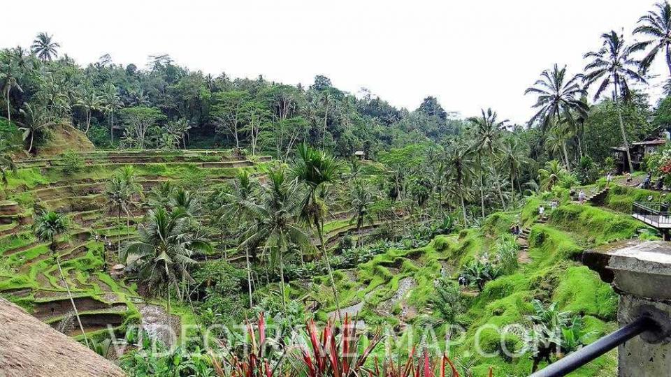 Bali-2018-16