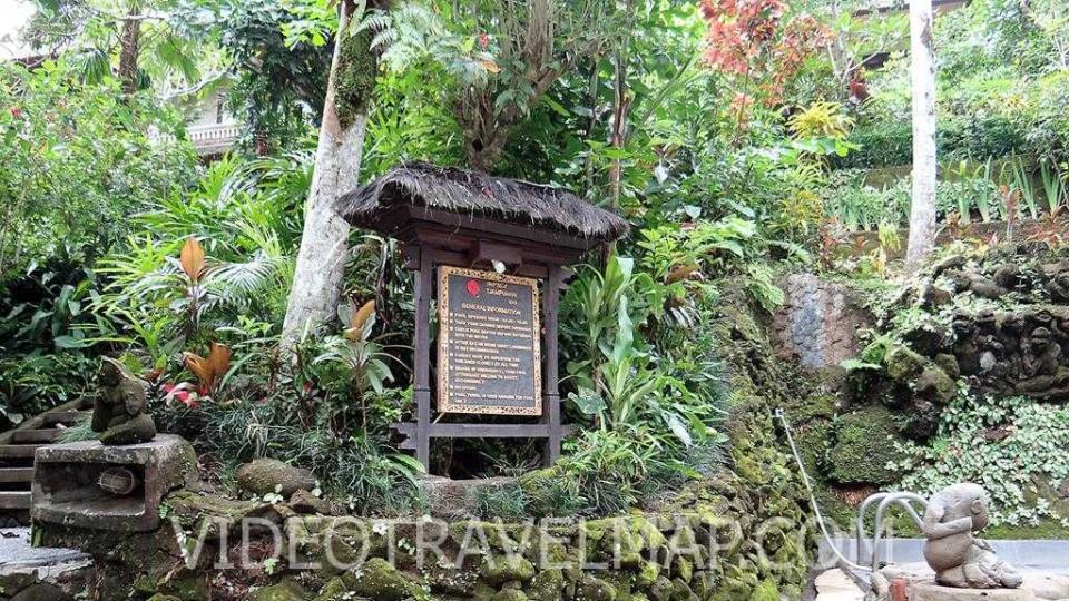 Bali-2018-60