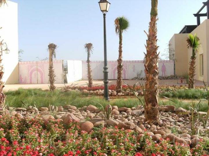 Maroko-2012-151