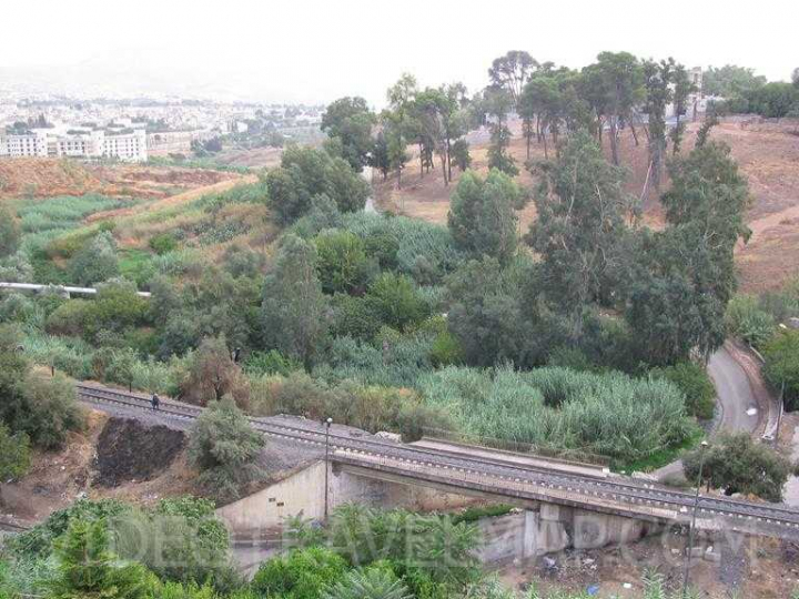 Maroko-2012-168