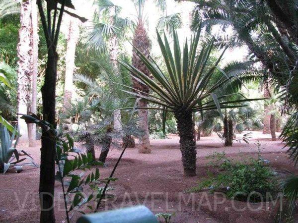 Maroko-2012-192