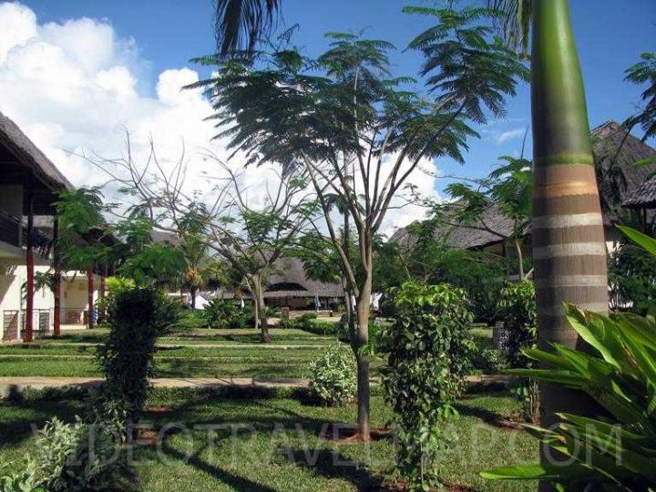 Zanzibar-2012-27