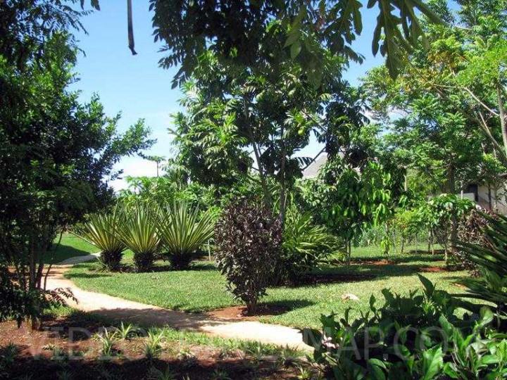 Zanzibar-2012-38
