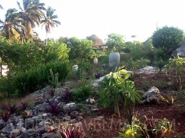 Zanzibar-2012-8
